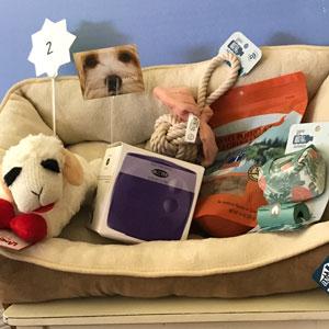 Doggy Heaven Basket